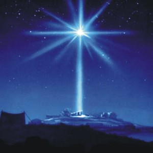 Star-of-Bethlehem[1]