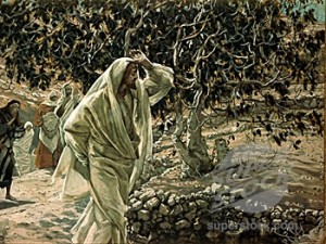 Fig-Tree-cursing-Tissot-300x225[1]