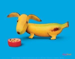 banana doxie[1]