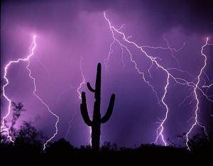 Tucson_000000798345[1]